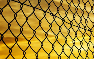 A mesh fence